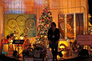 My photo at the Festival of Trees